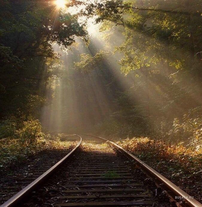 Поэтому мы должны жить, любить, прощать и всегда делать самое лучшее