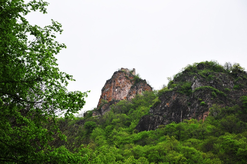 Лечебная природа Грузии.