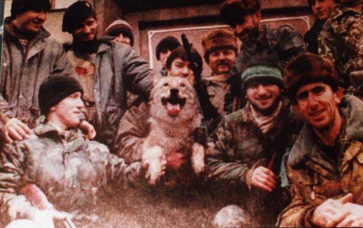 Почему чеченцы называют волка своим символом и уважают этого зверя? | Чеченский след | Яндекс Дзен