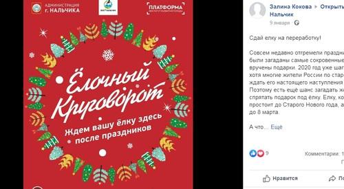 Экологи организовали в Нальчике акцию по утилизации новогодних елок
