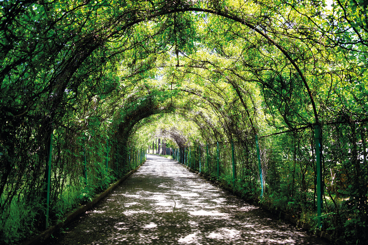 Пешком по Ботаническому саду, или вся Армения за пару часов!