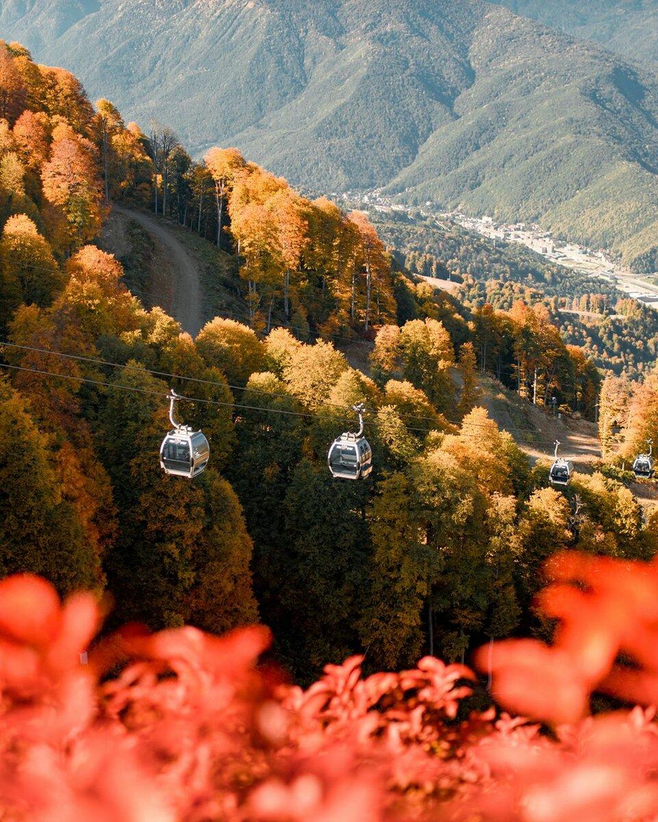 5 мест в Сочи обязательных для посещения осенью!